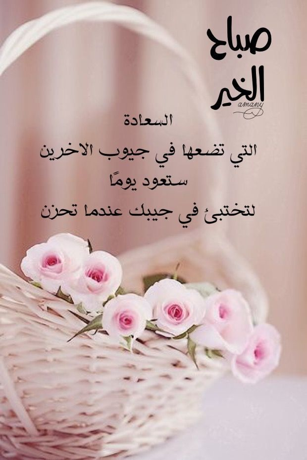 صباح الخير Good Morning Flowers Good Morning Arabic Morning Greeting