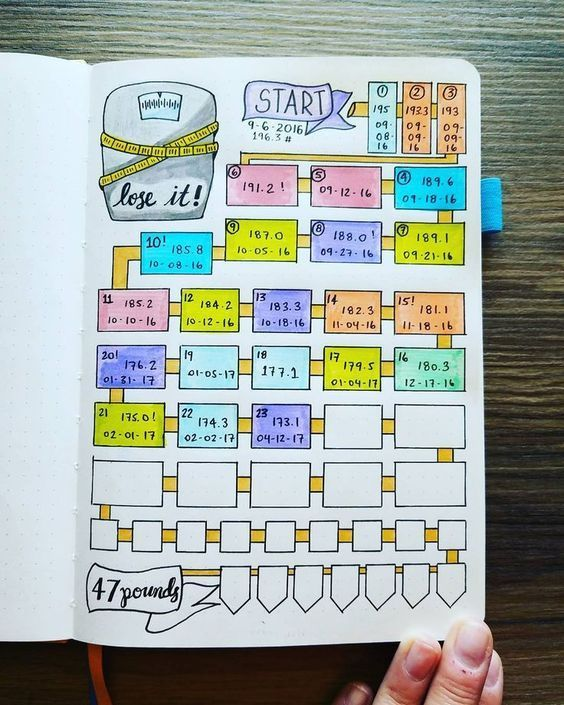 new bullet journal setup weight loss tracker my new weight loss