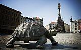Olomouc © m-ARK | Olomoucký kraj