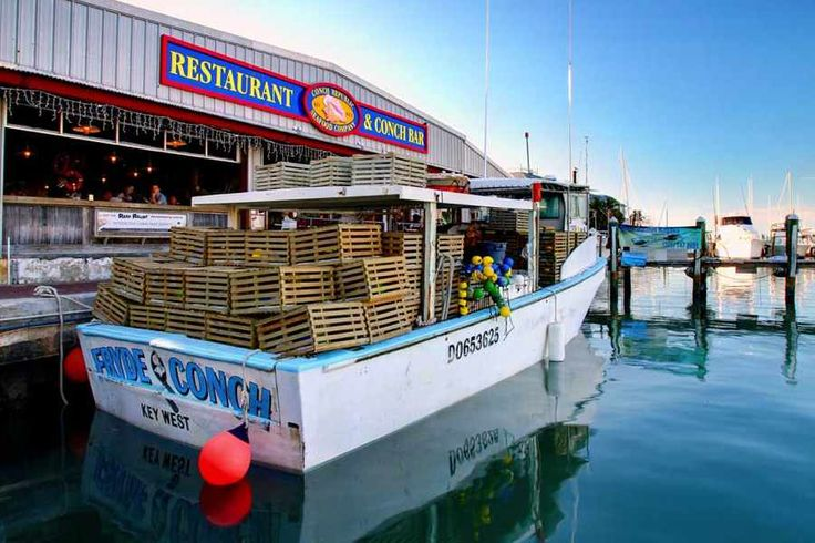 Great choice for dinner in the Keys - Conch Republic Seafood Company | Fresh Fish, Live Music, Happy Hour, Weddings