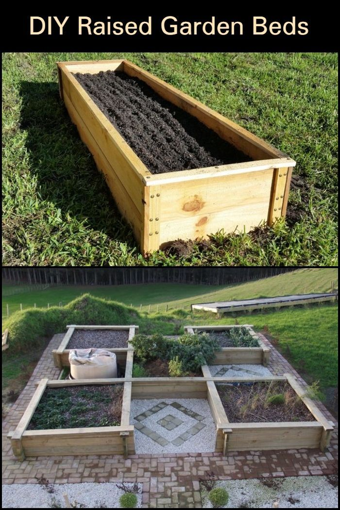 Build Your Own Raised Garden Bed And Improve The Experience Of Growing Your Own Food Diy Raised Garden Raised Garden Beds Garden Beds