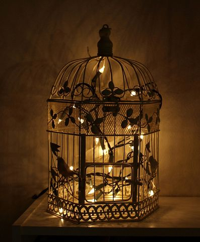 Fairy lights in an ornate birdcage is such a pretty look. Love it.