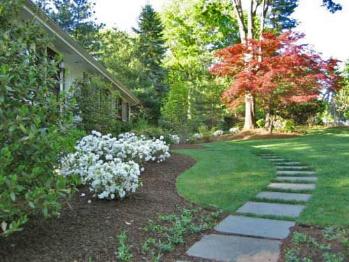 25 best ideas about stepping stone walkways on pinterest - Yard stepping stone ideas ...