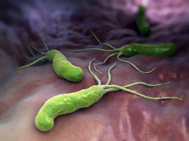 Zákerný Helicobacter: Problémy s trávením a zapálené vyrážky sú len začiatok!