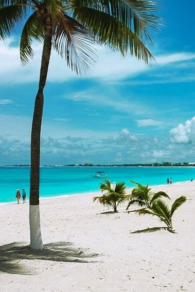 Cayman Islands • In the Western Caribbean