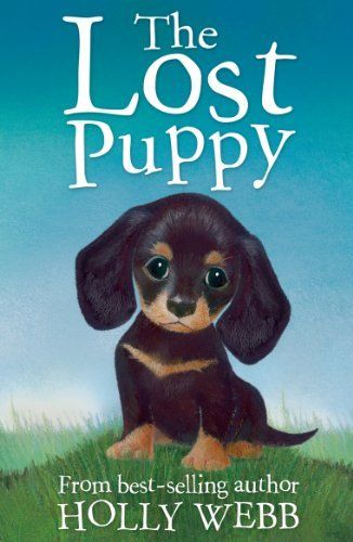 The Lost Puppy (Holly Webb Animal Stories) by Holly Webb, http://www.amazon.ca/dp/B008P1ITZ4/ref=cm_sw_r_pi_dp_nNivtb0T9KYAQ