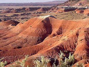 The Painted Desert is a desert of badlands in the Four Corners area from the Grand Canyon National Park into the Petrified Forest National Park. Much of the Painted Desert region is within the Navajo Nation. Much of the region is accessible only by foot or unpaved road though major highways and paved roads cut across the area. The towns of Cameron and Tuba City, both within the Navajo Nation, are two major settlements. A permit is required for all backroad travel in the Navajo Nation.