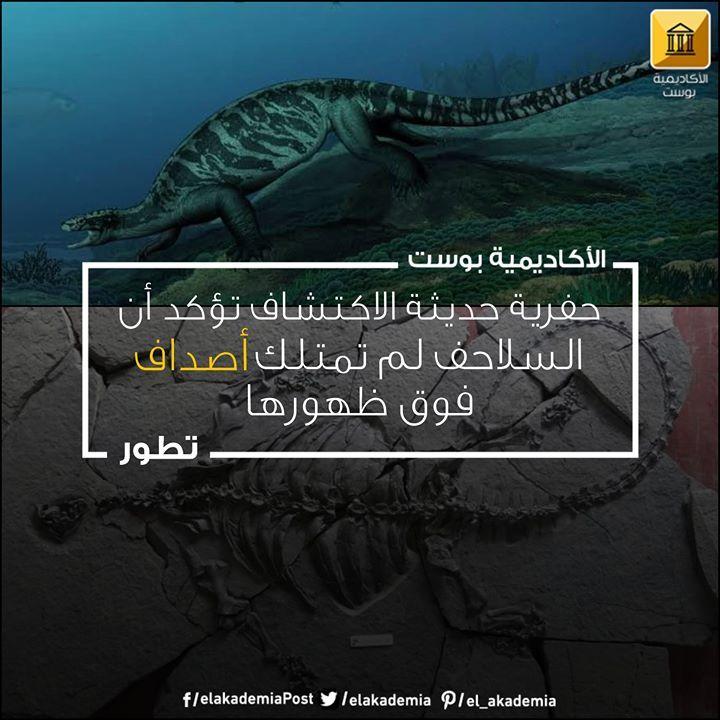 أدلة حديثة الاكتشاف تؤكد أن السلاحف كانت تعيش بدون صدفة فوق ظهورها تم اكتشاف هذه الأدلة في مقاطعة قويتشو Guizhou جنوب غرب Movie Posters Movies Lockscreen