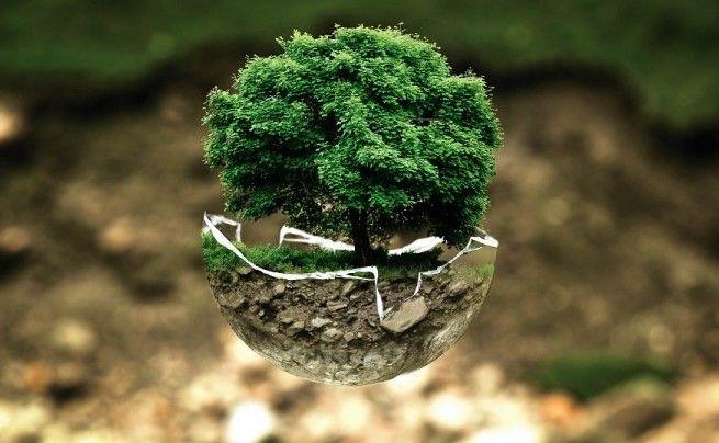 Lo spreco zero salva anche l'ambiente