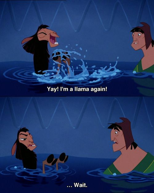 Yay!!....wait -- The Emperor's New Groove! My favorite part!