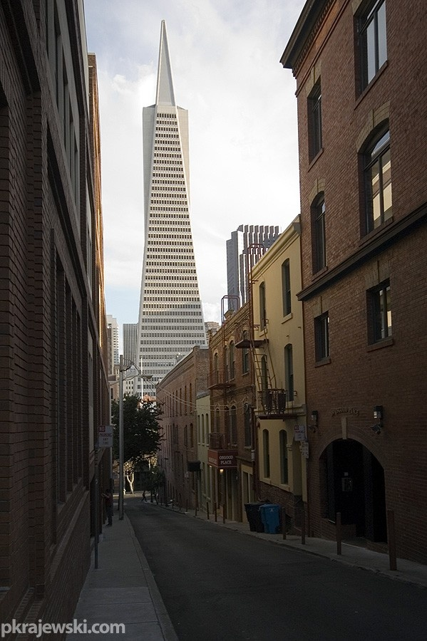 135 best san francisco architecture images on pinterest for Top architects san francisco