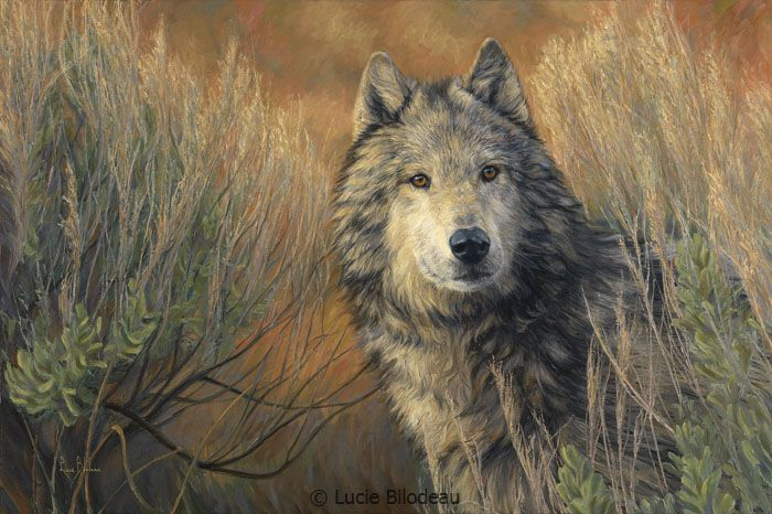 """""""Watchful"""", oil on canvas, 20"""" x 30"""", by Lucie Bilodeau."""