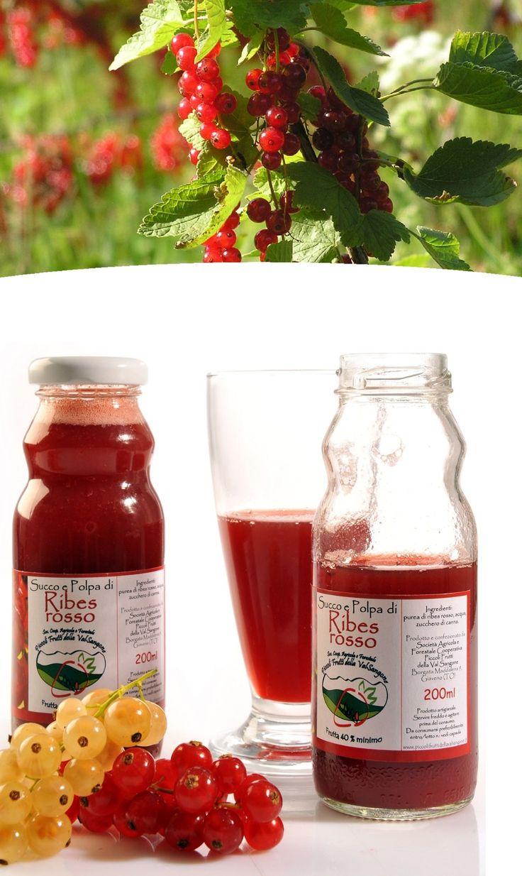 Piccoli frutti della Valsangone . Succhi di frutta bio . Ribes rosso