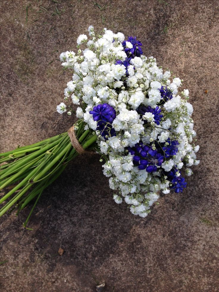 Spring bridesmaids bouquet of gypsophila and muscari (grape hyacinth) www.jennyfleur.co.uk