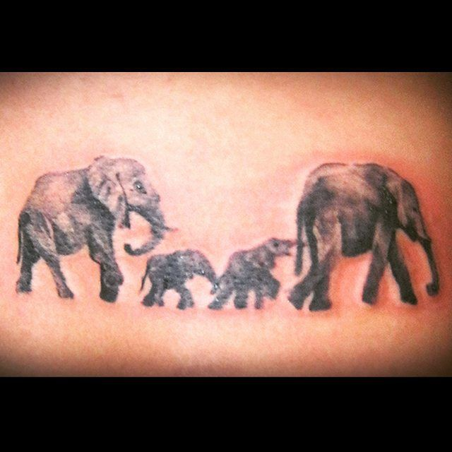 17 best ideas about elephant family on