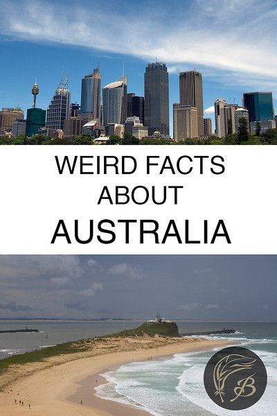 Australia is beautiful, diverse but also undeniably odd. Here are 34 weird facts about Australia, that you may or may not have known.