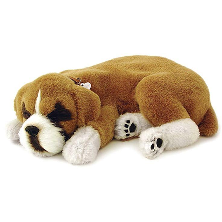 Модная интерактивная игрушка от американского бренда PERFECT PETZZZв виде трогательного спящего щенка боксера, в ошейнике с биркой и механизмом внутри игрушки, полностью имитирующим дыхание и сопение спящей собаки. Подарок оформлен в подарочный домик с кроваткой, щеткой для ухода за шерстью и