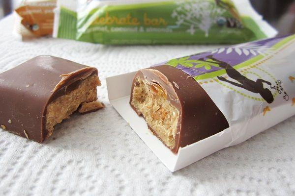 Eli's Earth Bars Organic Candy Bars... stocking stuffer idea