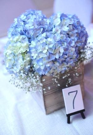 Hydrangea Centerpiece by Sage Market + Design, Newburyport, MA