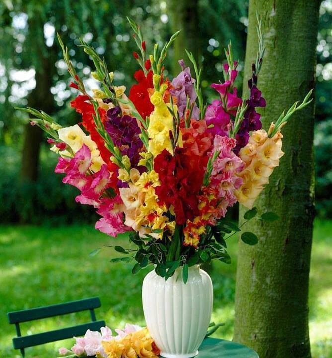Gladiolus Arrangement- could work for altar arrangements in all peach with eucalyptus at the bottom?