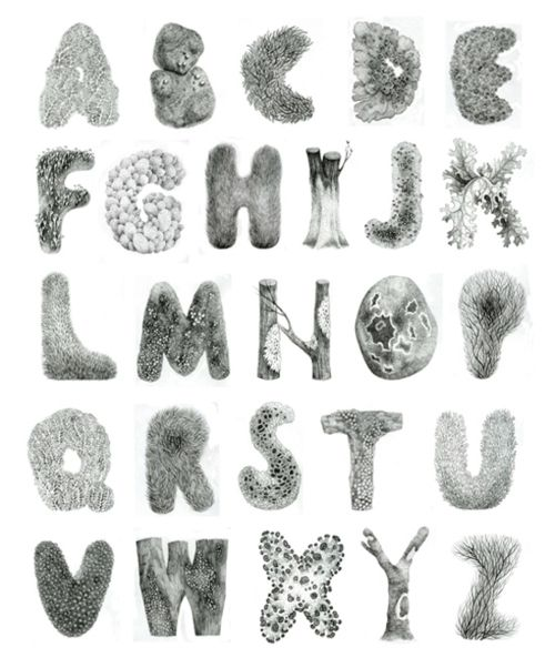 (via Mossy alphabet on the Behance Network)