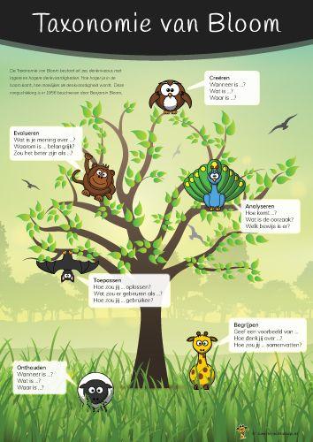 Op deze poster is de Taxonomie van Bloom overzichtelijk en visueel weergegeven. Bij iedere orde van denken staan drie voorbeeldvragen.