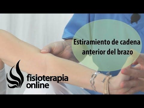 Estiramiento del músculo biceps humeral y cadena muscular anterior del brazo. | Fisioterapia Online