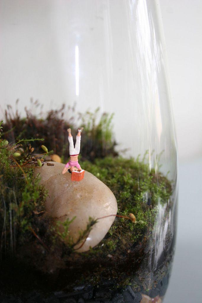 Mignon et joli, j'adore. Tiny, cute and funny.  Twig Terrariums