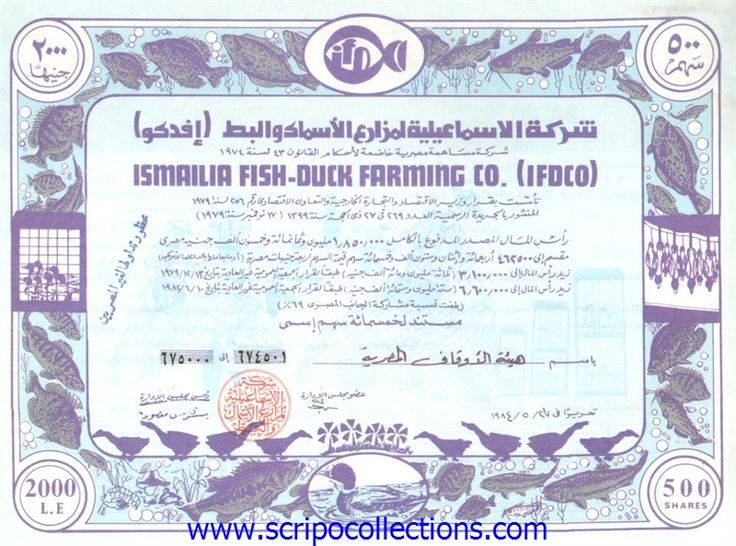 Ismailia Fish- Duck Farming Co. (IFDCO)