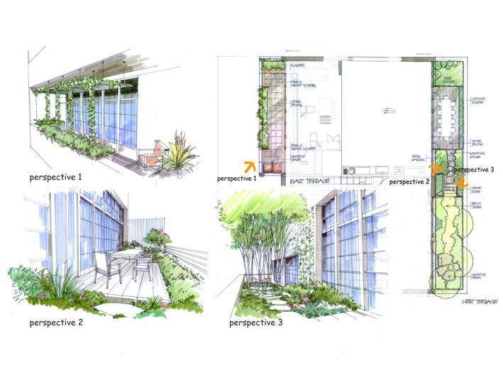 138 best images about landscape drawing on pinterest for Landscape design sketches