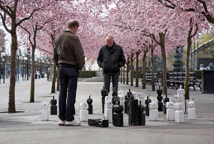 Alberi in fiore a Stoccolma