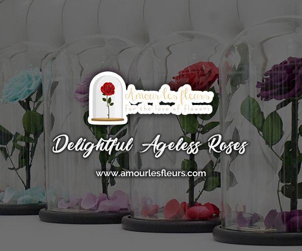 Delightful Ageless Roses Rose Rose Online Luxury Flowers
