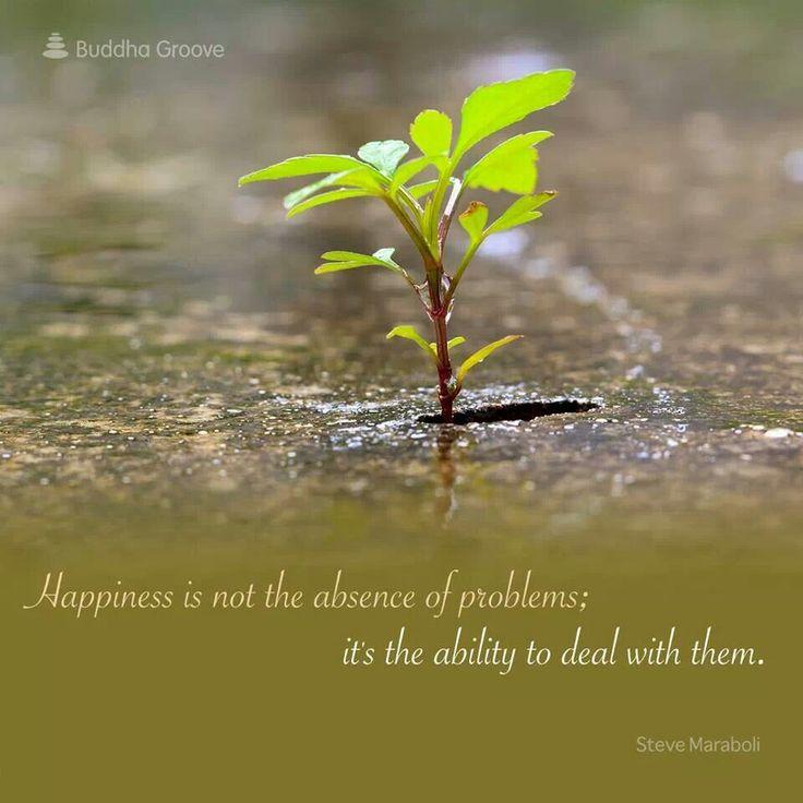 Be happy #RoseBloom