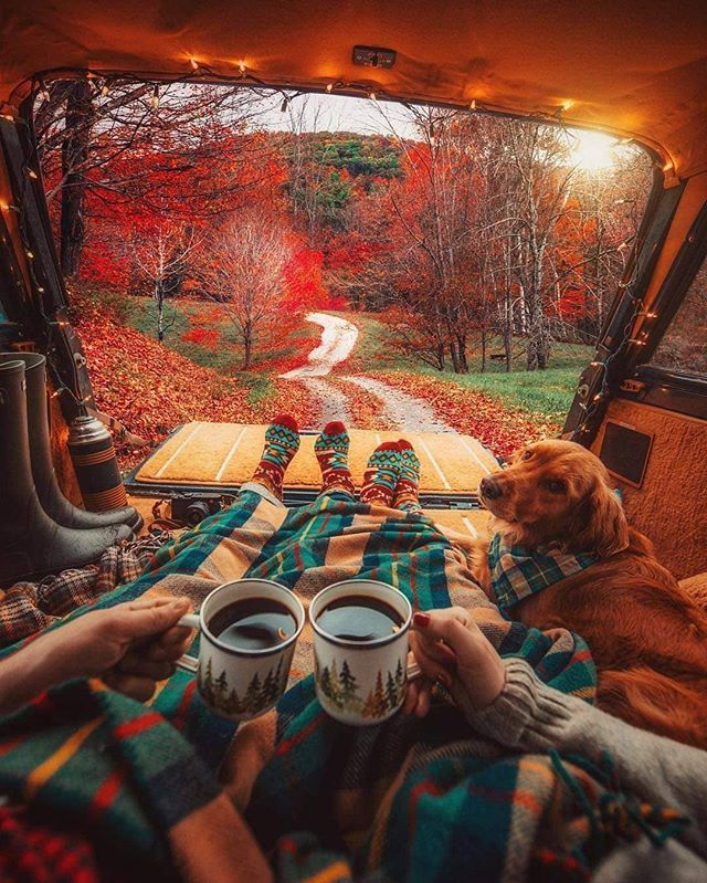 C�mo nos imaginamos el s�bado perfecto... | Autumn cozy, Autumn aesthetic,  Van life