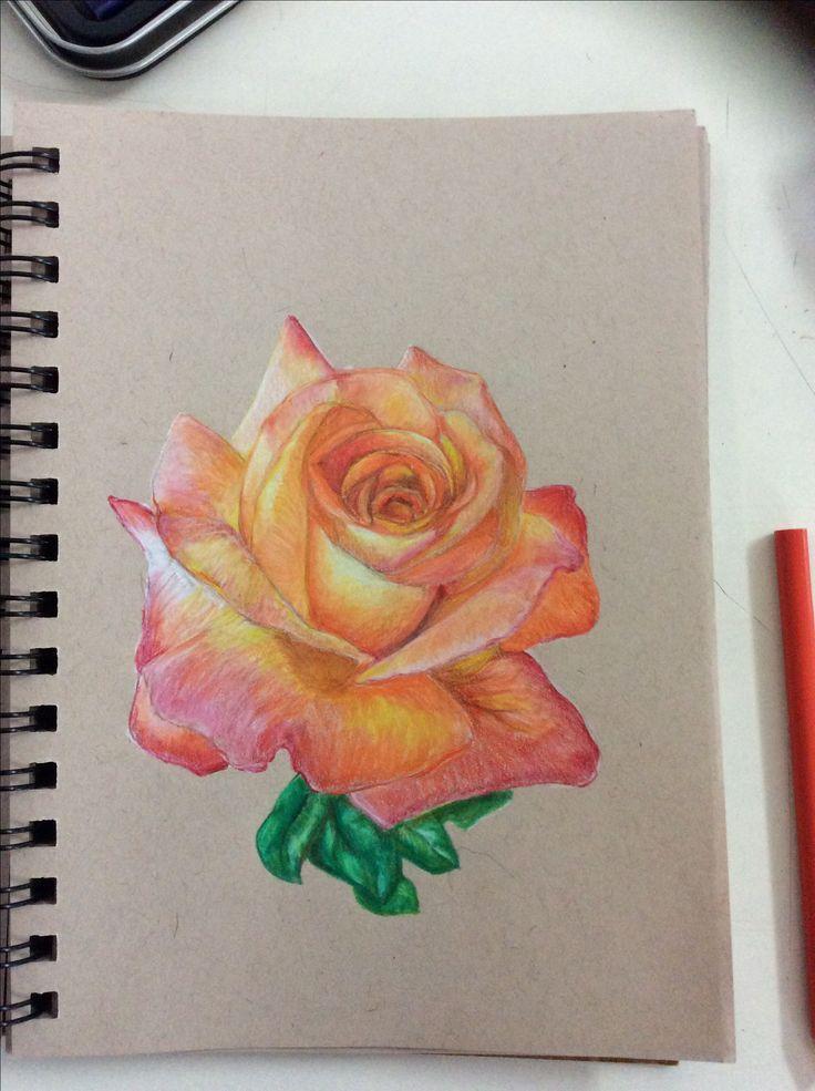 i drew a flower