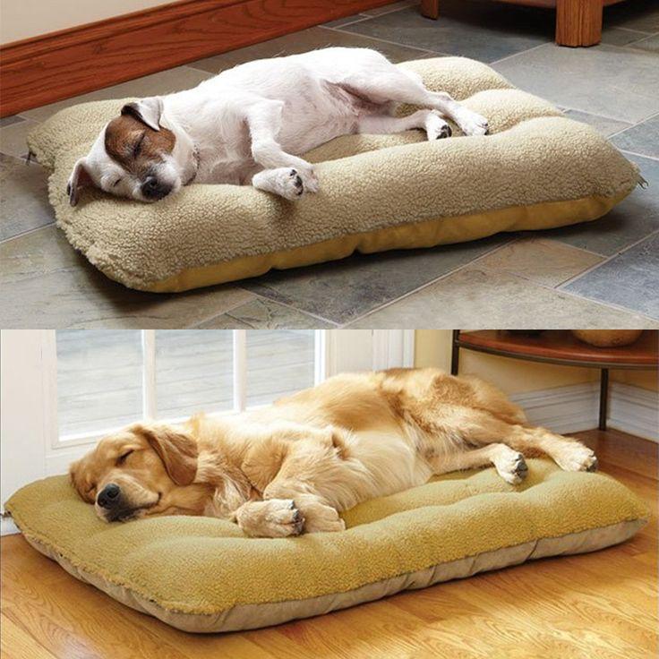 Best 25 Large Dog Beds Ideas On Pinterest Large Dog Bed