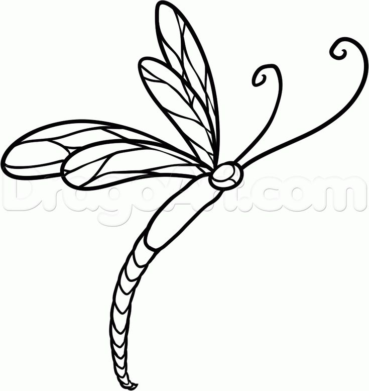 How to Draw a Dragonfly Tattoo, Step by Step, Tattoos, Pop Culture ...
