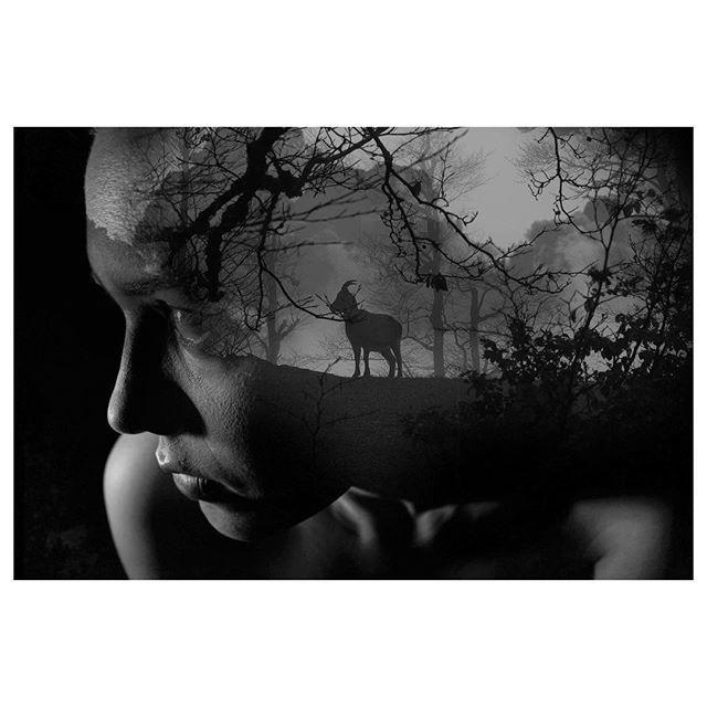 @mareykrap 's daily art work. . . . #art #artwork #dailylook #daily #adobe #photoshop #doubleexposure #contemporaryart #drawing  #ootd #포토샵  #드로잉 #데일리 #lovewatts #홍대 #아트워크#supplyanddesign #graphicdesigncentral #designarf #simplycooldesign #designspiration #photoshop_creative #igcreative_editz #madethis #d_expo #thegraphicspr0ject #graphicroozane  #creativecloud