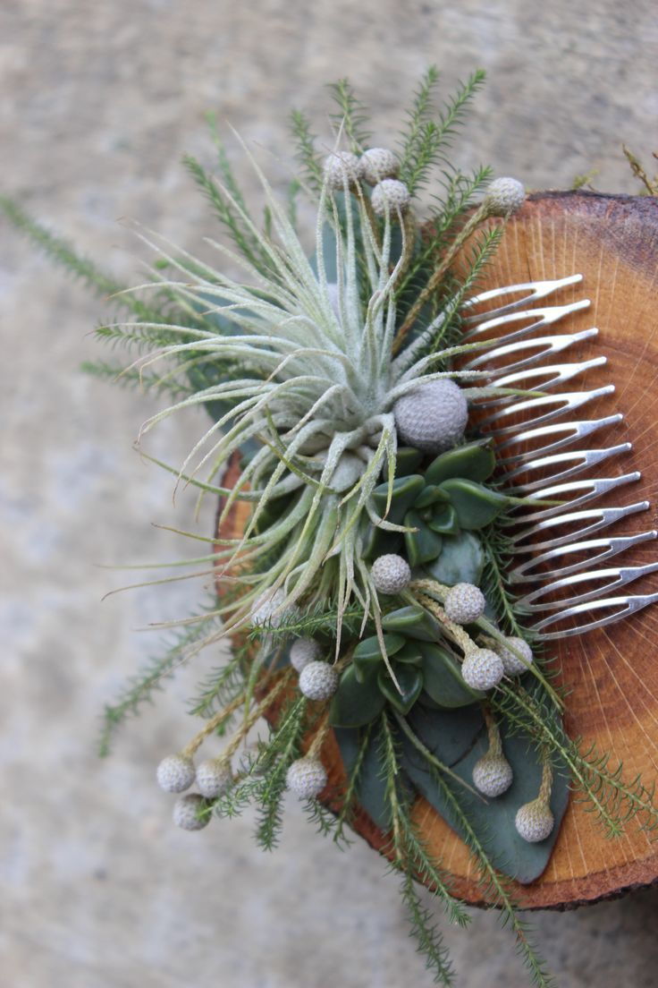hair flowers floral comb fresh botanical flowers to wear. air plant tillandsia succulent foliage green gray wedding brunia berries http://www.sophisticatedfloral.com/
