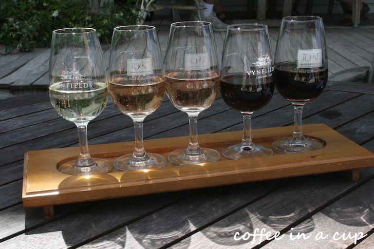 wine tasting at vynfields wineyard in martinborough, new zealand