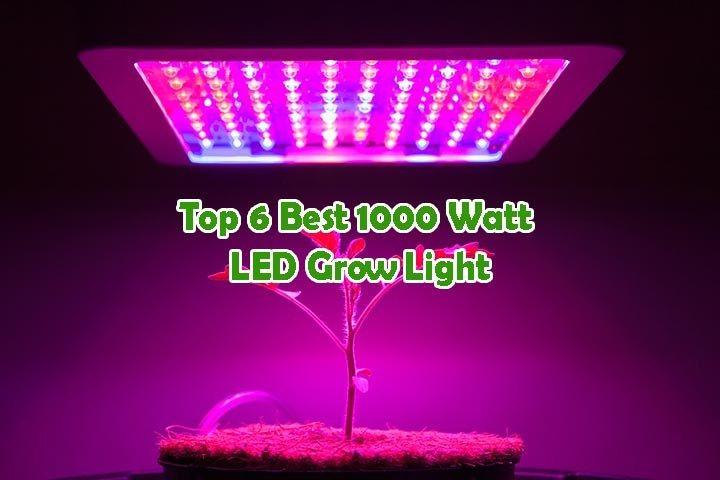 Top 6 Best 1000 Watt Led Grow Light 2020 Updated