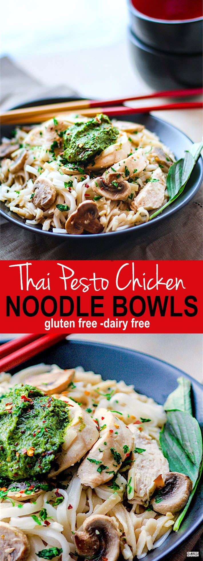 Spicy Thai Pesto Chicken Noodle Bowls! These gluten free noodle bowls are delicious and easy to make! The thai pesto brings a kick of flavor and a dose of Healthy antioxidants! A dairy free dinner that's ready in less than 45 minutes and great for a hungry crew! www.cottercrunch.com