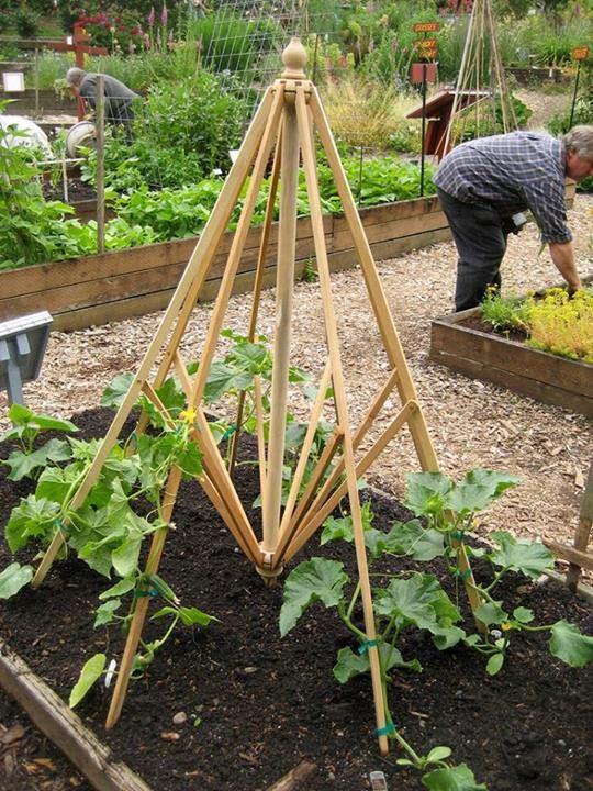 An old outdoor umbrella into a garden trellis or maybe even an easel.