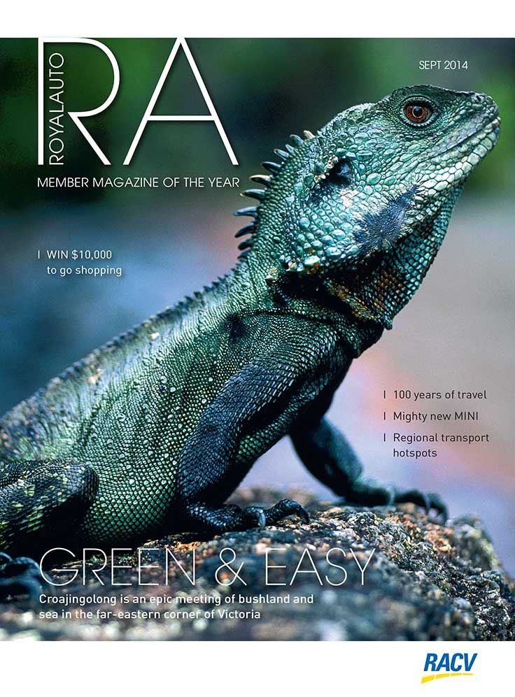 The East Gippsland water dragon featured as RoyalAuto's cover star in September 2014. Photo by Don Fuchs. Read the full story by Sandy Guy- http://www.racv.com.au/wps/wcm/connect/royalauto/home/travel/australia/victoria/regions/gippsland/croajingolong