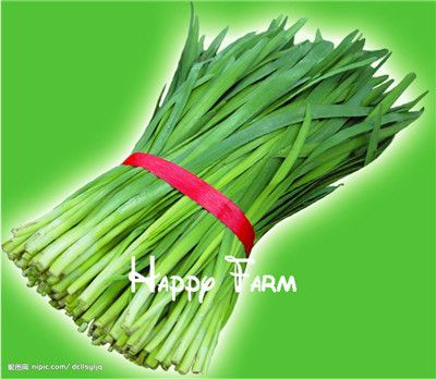 Vegetables fruit Delicious Chinese chive seed new arrival leek seeds Bonsai plants Seeds for home & garden - 200 seeds/bag