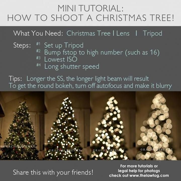 settings for camera for indoor Christmas tree pictures