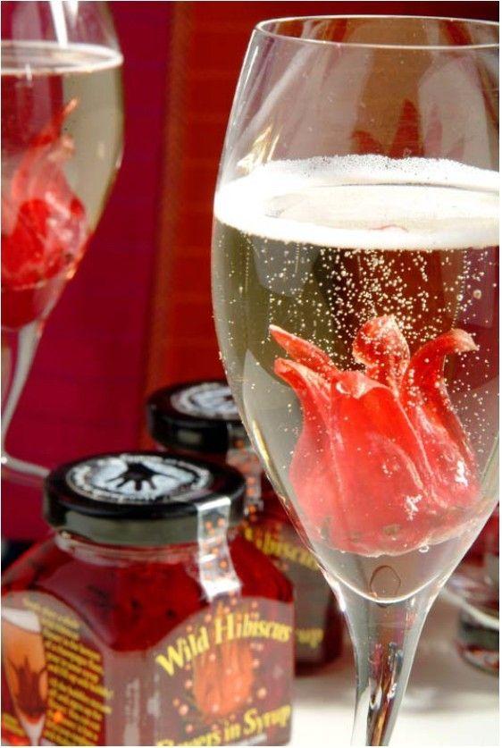 Wilde Hibiskus Blüte öffnet sich im Glas mit Sekt