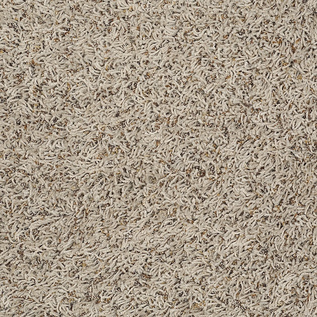 Hgtv Home Flooring By Shaw Carpeting In Style Quot Happy