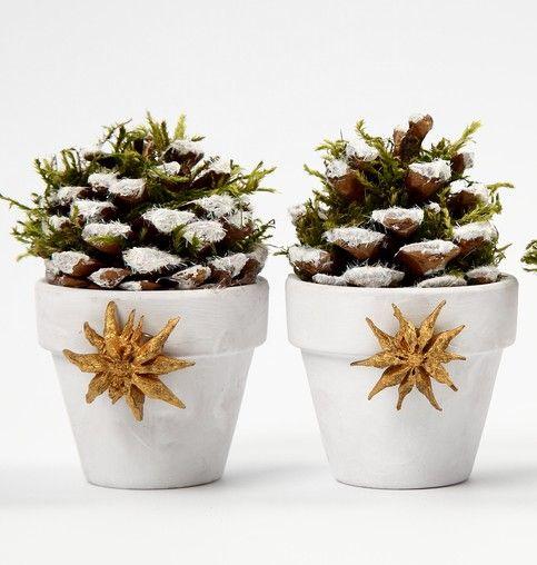 Oltre 25 fantastiche idee su lavoretti con vasi di for Vasi terracotta usati