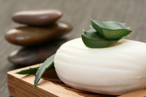 Recette de savon maison à l'aloe vera sans soude caustique. La plupart des savons sont fabriqués avec de la soude caustique, une substance qui n'a pas que des bienfaits pour la santé, et qui peut être à l'origine d'anomalies de la peau comme la dermatite, les ...
